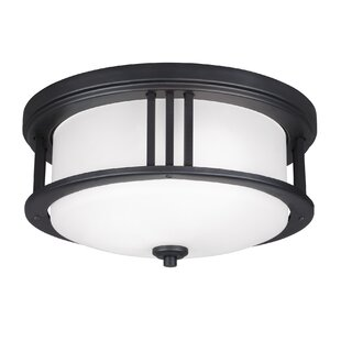 Dunkley 2-Light LED Outdoor Flush Mount by Darby Home Co