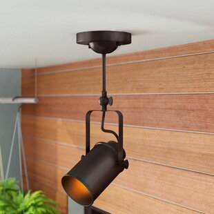 Lanora Indoor Security Spotlight by Ebern Designs