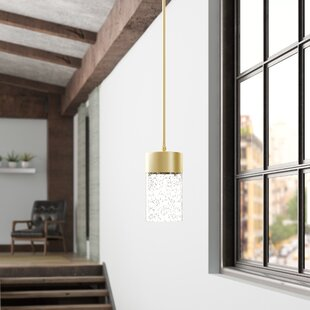 Ozella 1-Light Cylinder Pendant by Everly Quinn