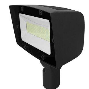 Lumight Asimo 100W 1 Light LED Flood/Spot Light