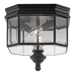 Burrell 2-Lights Outdoor Flush Mount