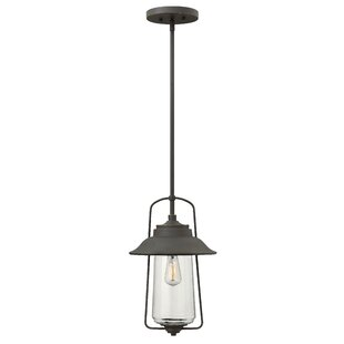Belden Place 1-Light Outdoor Hanging Lantern