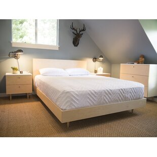 Ulm Queen Platform Bed by Spot On Square Great Reviews