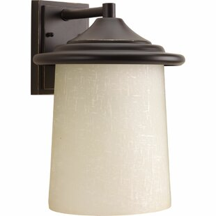 Crestside 1-Light Outdoor Sconce
