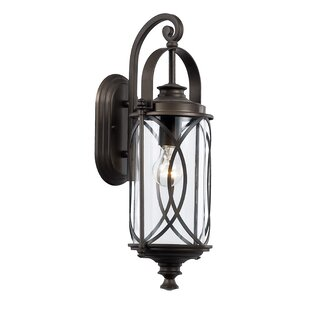Ginsburg 1-Light Outdoor Wall Lantern by Bungalow Rose