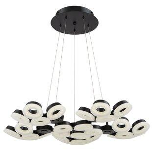 Berriman 30-Light Cluster Pendant by Brayden Studio