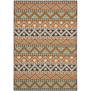 Boyertown Marea Orange Indoor/Outdoor Area Rug by Brick & Barrow