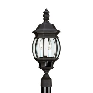 Astoria Grand Tortez 2-Light Lantern Head