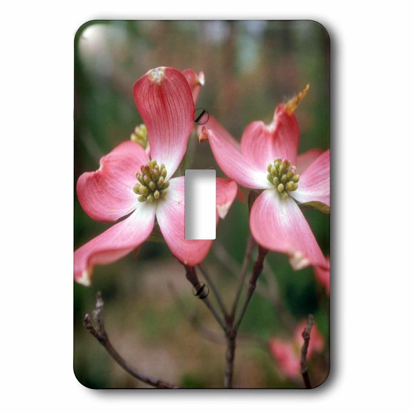 3drose Dogwood Blooming 1 Gang Toggle Light Switch Wall Plate Wayfair