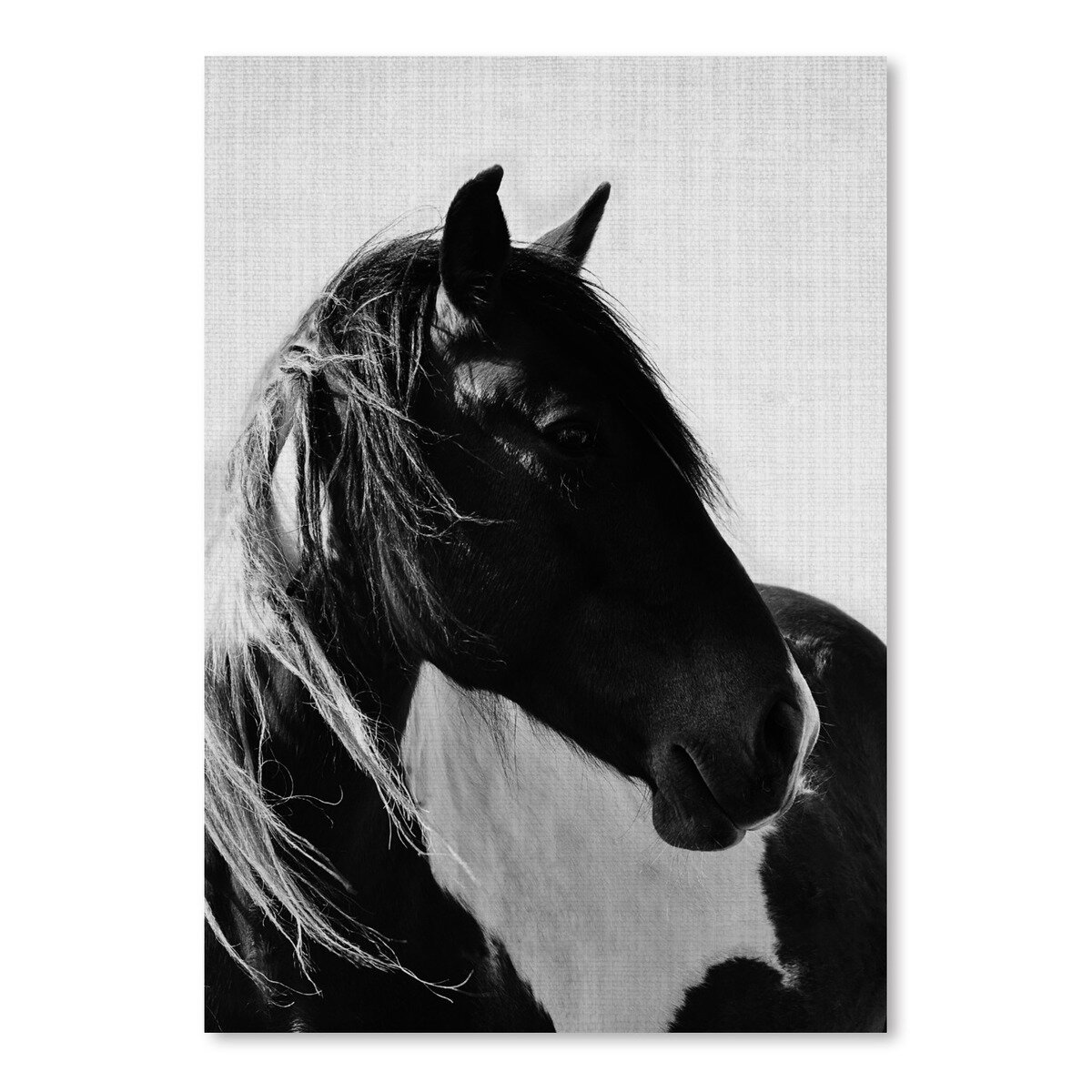 Laurel Foundry Modern Farmhouse Wild Horses 2 Photographic Print Reviews