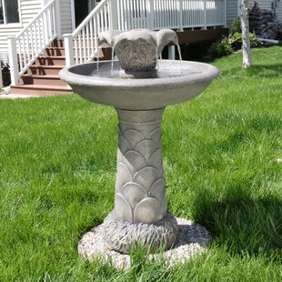Bayou Breeze Hough Polyresin 2 Tier Blossoming Spring Flower Birdbath Outdoor Water Fountain