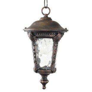 Astoria Grand Wurthing 1-Light Outdoor Hanging Lantern