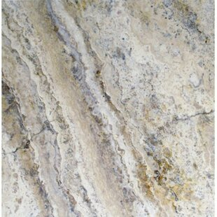 Philadelphia Travertine Field Tile in Honed, Unfilled and Chipped Brushed Gray
