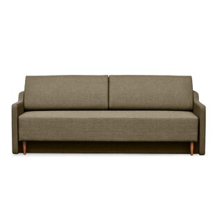 Low priced Sussex Sofa Bed by Brayden Studio Reviews (2019) & Buyer's Guide