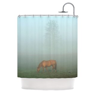 Horse in Fog Single Shower Curtain