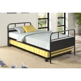 Viola Twin Metal Daybed with Trundle by Gracie Oaks
