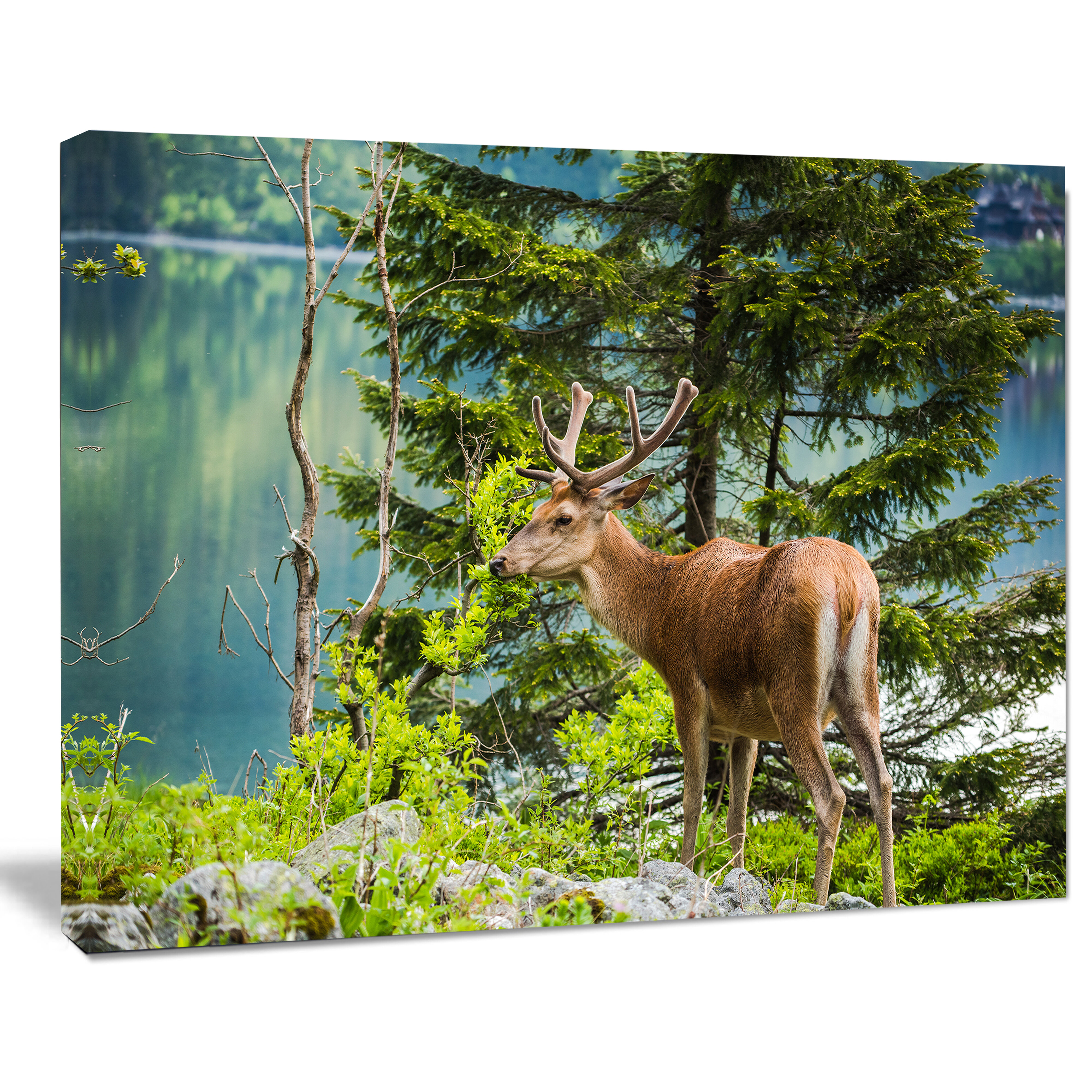 Designart Designart Deer Stag Near The Lake Animal