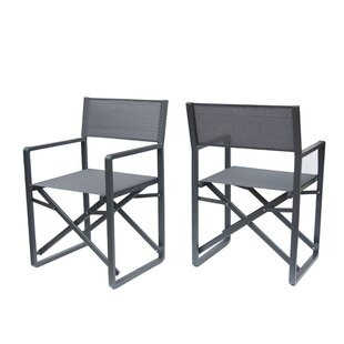 Latitude Run Galster Folding Director Chair