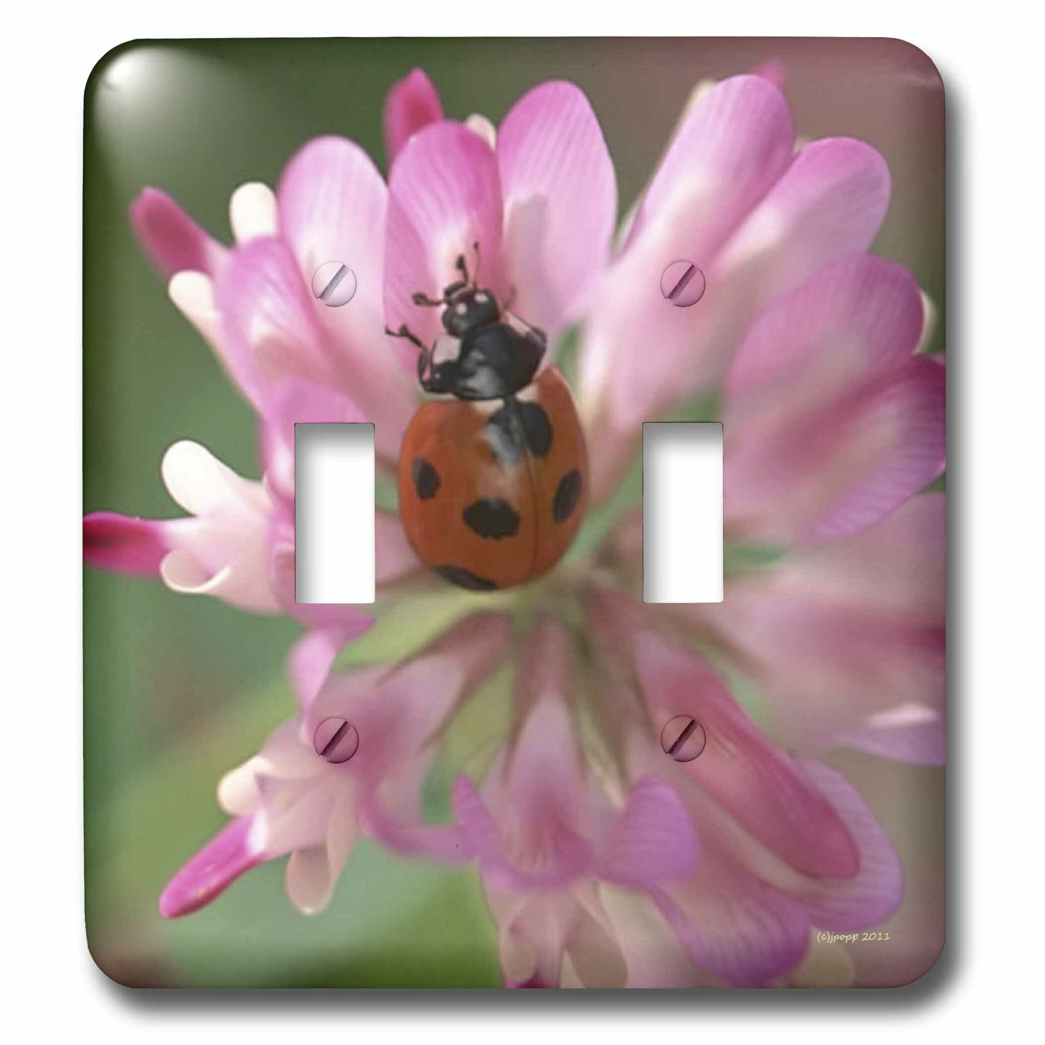 3drose Lady Bug 2 Gang Toggle Light Switch Wall Plate Wayfair