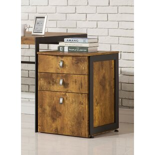 Union Rustic Natarajan 3-Drawer Vertical Filing Cabinet