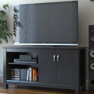Arlena TV Stand for TVs up to 50
