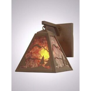 Inexpensive Timber Ridge Hanging 1-Light Outdoor Wall Lantern By Steel Partners