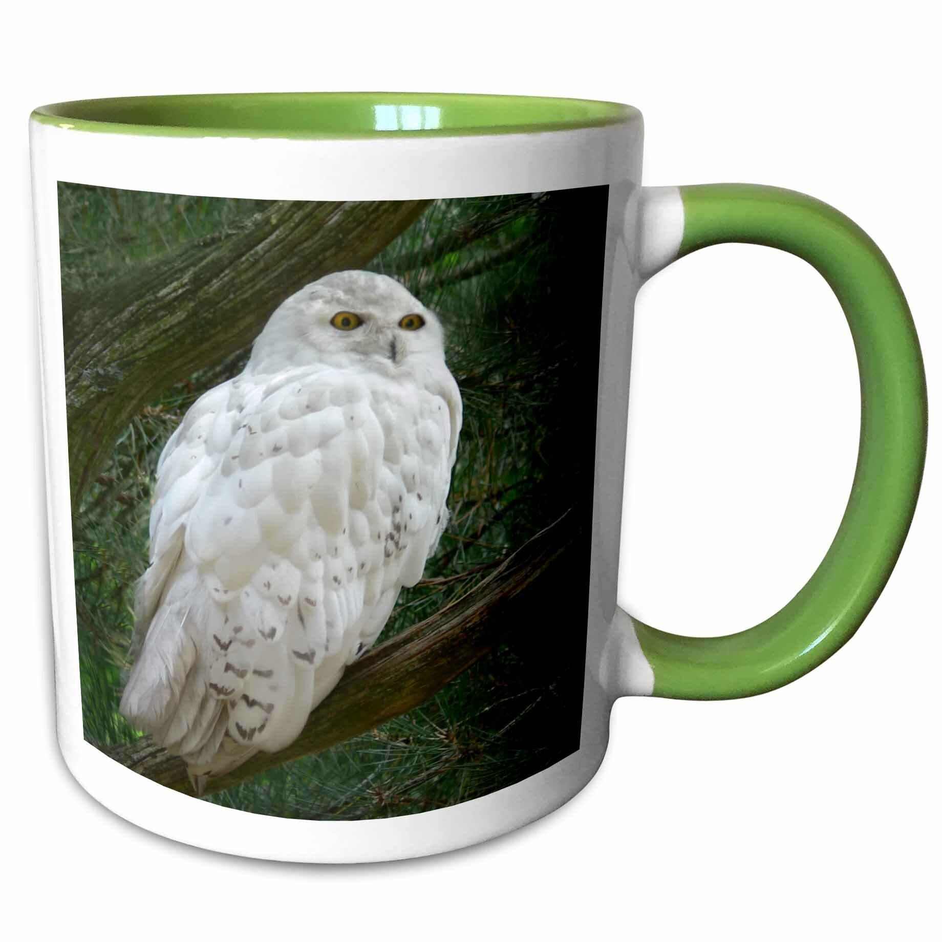 Foundry Select Chenault Snow Owl Perched On A Branch Against Coffee Mug Wayfair