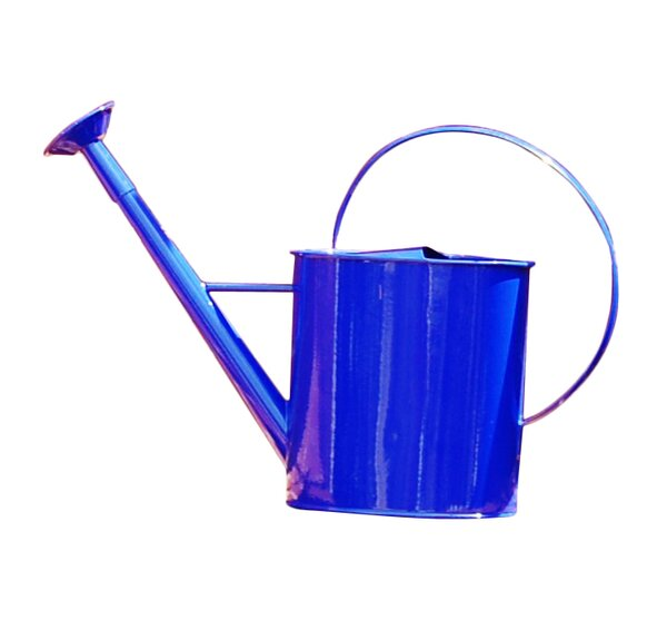 Griffith Creek Designs Metal 1 Gallon Watering Can With Long Spout Reviews Wayfair