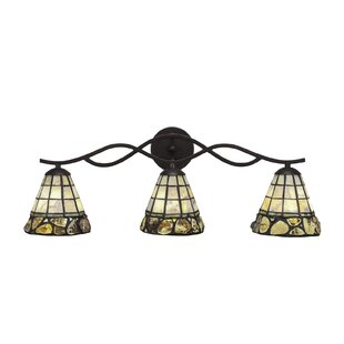 Astoria Grand Richlands 3-Light Vanity Light