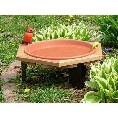 Garden Birdbath Songbird Essentials