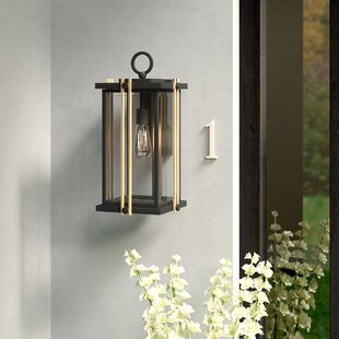 Francois Contemporary 1-Light Outdoor Wall Lantern