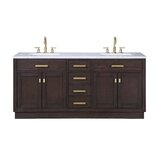 Chestnut 72 Double Bathroom Vanity by Ivy Bronx