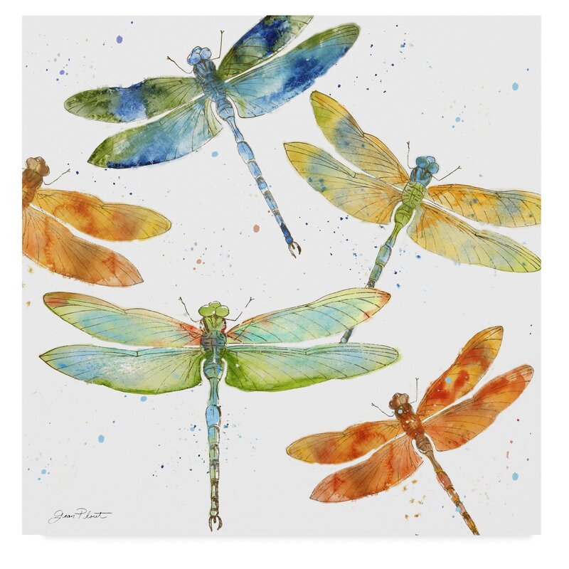 Trademark Art Dragonfly Bliss 1 Print On Wrapped Canvas Reviews Wayfair