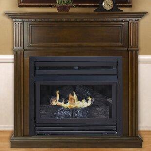 Indoor Ventless Gas Fireplaces   Wayfair