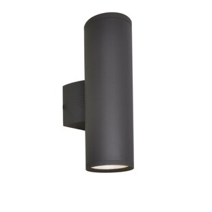 Orren Ellis Leilla 2-Light Outdoor Sconce
