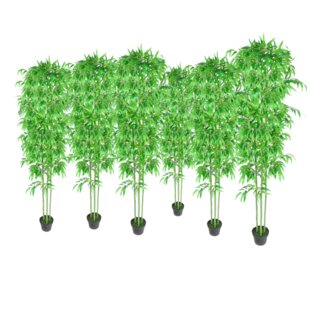 Bamboo Trees In Pot (Set Of 6) Image