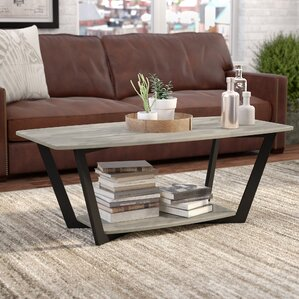 Anissa Coffee Table with Magazine Rack by Trent Austin Design