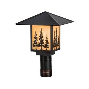 Greenbriar Oak Seneca Tall Pines 1-Light Lantern Head By Meyda Tiffany Outdoor Lighting