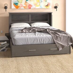 Edmeston Queen Storage Murphy Bed with Mattress by Latitude Run