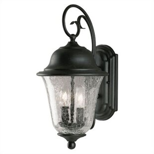 Searching for Studenburg Exterior 2 Light Wall Lantern By Westinghouse Lighting