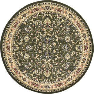 Essehoul Green Area Rug by World Menagerie