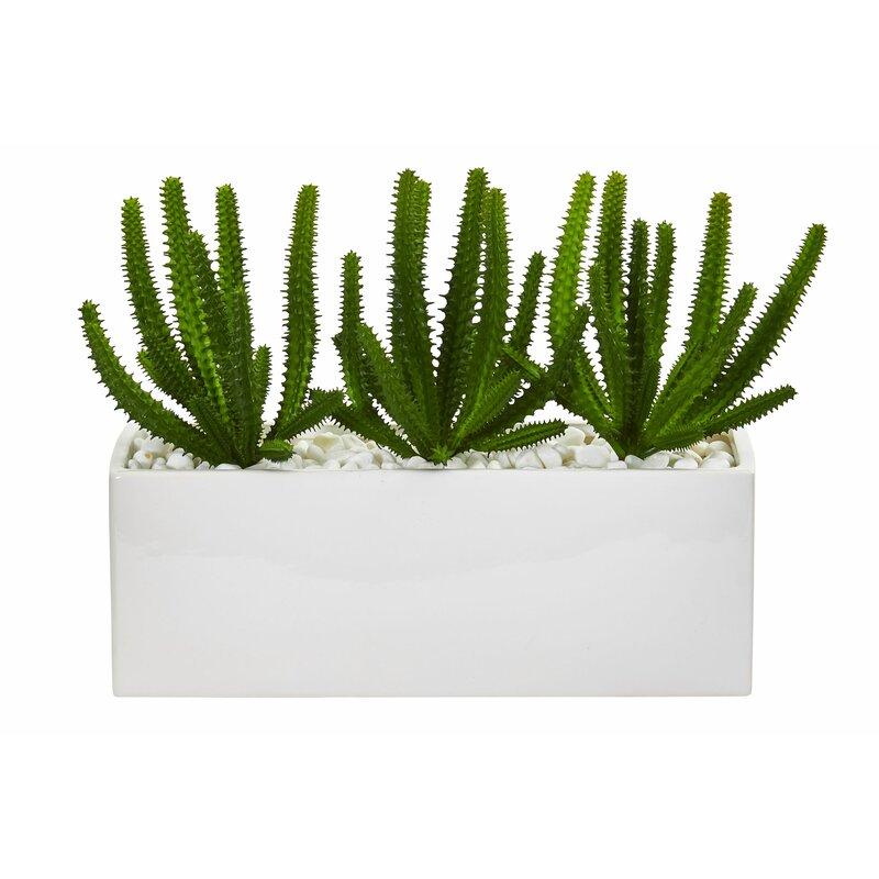 Primrue Artificial Cactus Finger Succulent Plant In Decorative Vase Wayfair