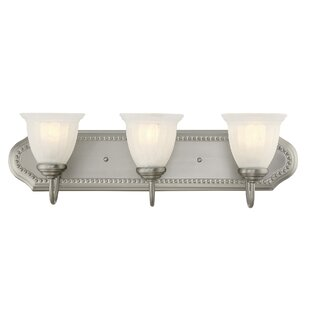 Charlton Home Ellett 3-Light Vanity Light