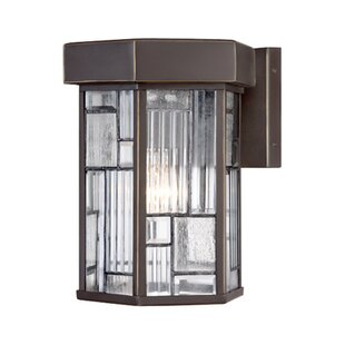 Latitude Run Cochecton 1-Light Outdoor Wall Lantern