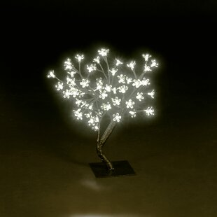 Review Cherry Blossom Tree Lighted Display