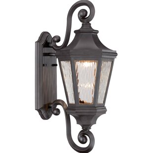 Deziree 1-Light Outdoor Wall Lantern