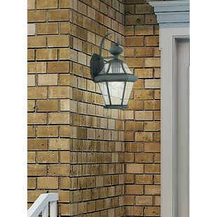 Darby Home Co Violetta Outdoor Wall Lantern