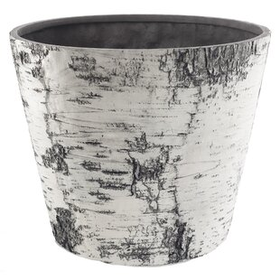 Kanisha Natures Look Plastic Pot Planter By Millwood Pines