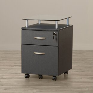 Ingham 2 Drawer Mobile File Cabinet by Symple Stuff