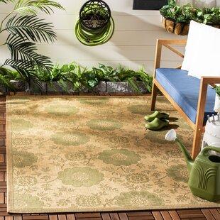 Laurel Natural/Green Indoor/Outdoor Area Rug
